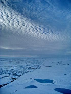 Clean Arctic air